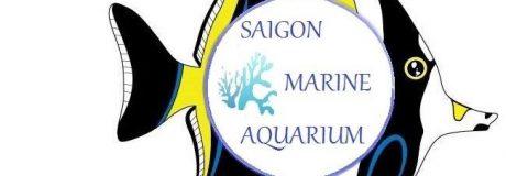 SAIGON MARINE AQURIUM